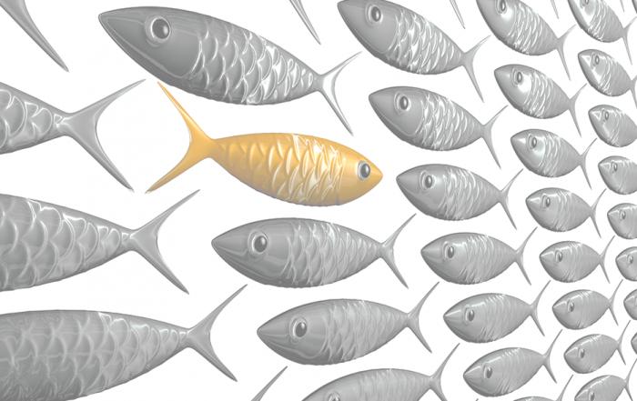 -экспортёры-рыбы-и-морепродуктов-