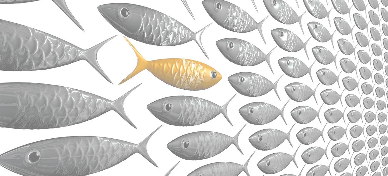 ТОП-20 экспортёров рыбы и морепродуктов 2019